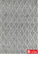 Kusový koberec Studio 620 Silver
